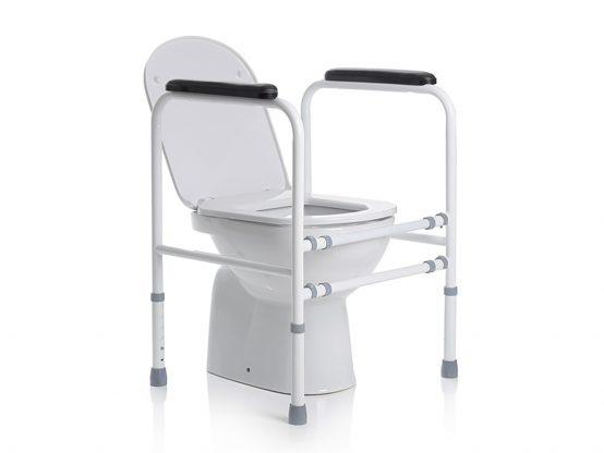 Toilet safetyrail